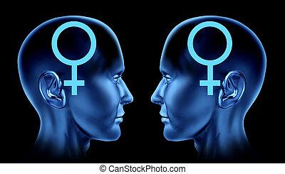lesbienne, et, couples gais