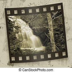 lesisty teren, wodospady