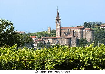 Lessinia (Verona, Veneto, italy), vineyards at summer and...