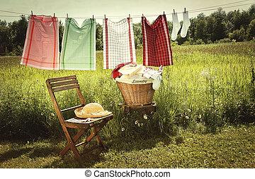 lessive, lavage, clothesline, jour