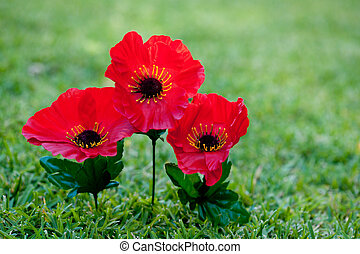 Lest We Forget - Anzac - Rememberance