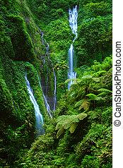 leste, java, madakaripura, cachoeira, indonésia