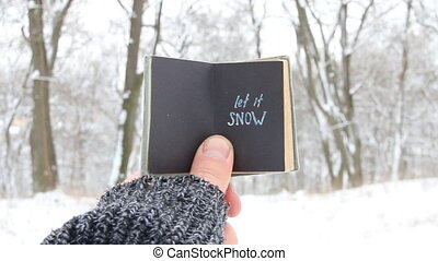 Let it snow concept, book with text