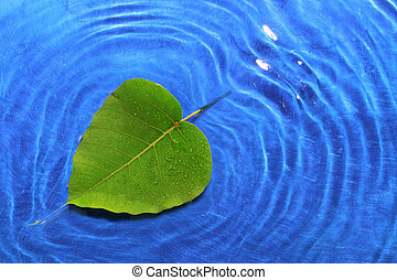 Let love spread - heart shaped leaf and water wave