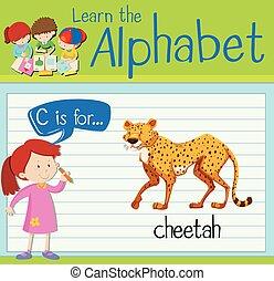 letra c, flashcard, guepardo