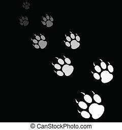 letra de tigre, fondo negro, pata