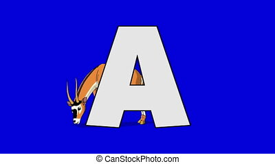Letter A and Antelope (background) - Animated animal...