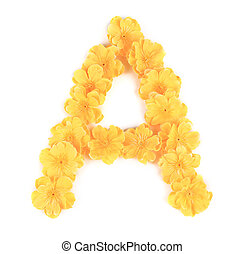 Letter A flower alphabet.