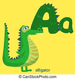 Letter A with Cute Alligator for Children Books