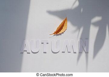 letter autumn cut from paper. Monochromatic concept
