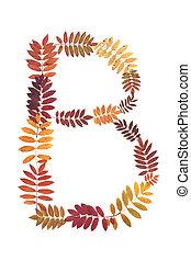 Letter B from alphabet