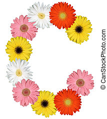 Letter C alphabet from flowers isolated on white