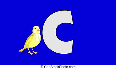 Letter C and Canary (foreground) - Animated animal alphabet....