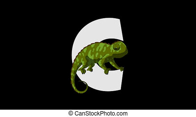 Letter C and Chameleon (foreground) - Animated animal...