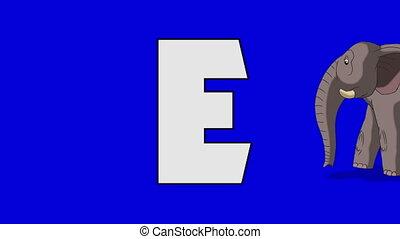 Letter E and Elephant (background) - Animated animal...