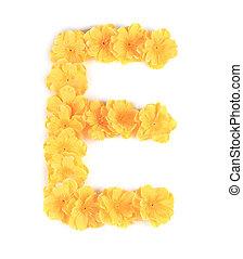 Letter E flower alphabet.