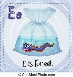 Letter E - Flashcard letter E is for eel
