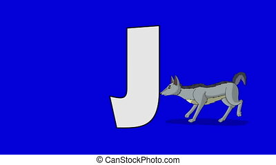 Letter J and Jackal (background) - Animated animal alphabet....