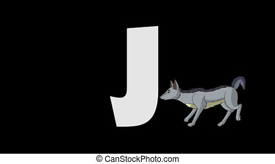Letter J and Jackal (foreground) - Animated animal alphabet....