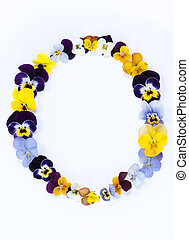 letter o alphabet made from pansy flowers