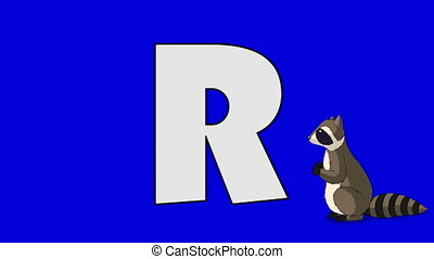 Letter R and Raccoon (background) - Animated animal...