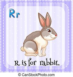 Letter R - Flash card letter R is for rabbit