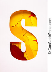 letter s cut from paper with paper autumn leaves
