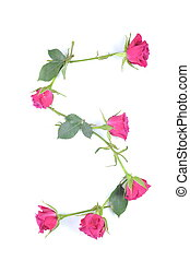 letter S maded from roses