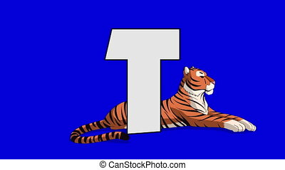 Letter T and Tiger (background) - Animated animal alphabet....