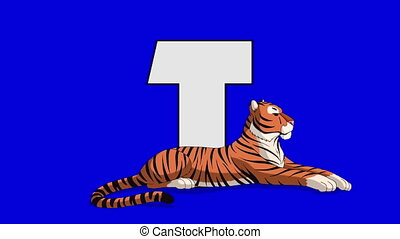 Letter T and Tiger (foreground) - Animated animal alphabet....