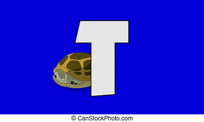 Letter T and Turtle (background) - Animated animal alphabet....