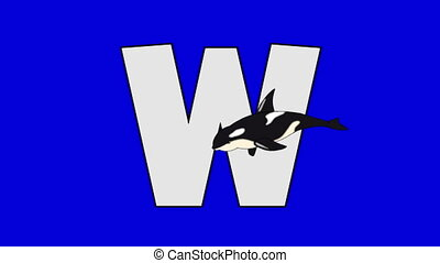 Letter W and Whale (foreground) - Animated animal alphabet....