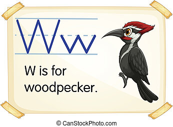 Letter W - Illustration of a flashcard with letter W