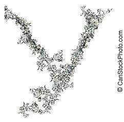 Letter Y.