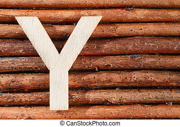 Letter Y of wood-made alphabet, top view and space for text