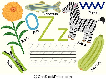Letter Z. Education for children. Learning English alphabet with writing practice. Vector illustration.