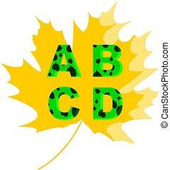 lettere, d, c, b, leaf., uno, vettore, fondo, acero