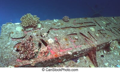 Lettering Salem Express shipwrecks underwater in the Red Sea...