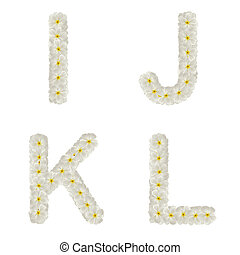 Letters made of tropical flowers frangipani (plumeria) isolated