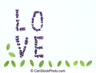 Letters of love from fresh lavender flowers
