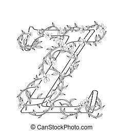lettre, floral, croquis, z
