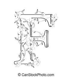 lettre, floral, f, croquis