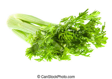 Lettuce against white background