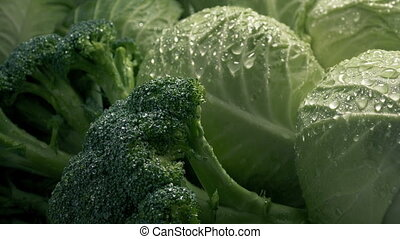 Closeup of lettuce and broccoli vegetables in water mist