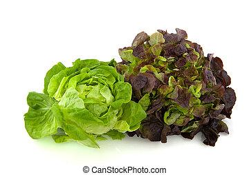 Lettuce assortment crisphead and red oak leaves
