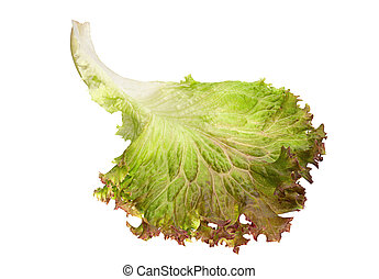 lettuce blad, slaatje