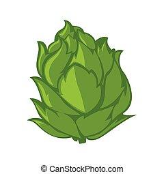 lettuce color illustration design