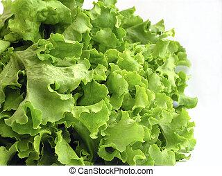 green lettuce's bouquet