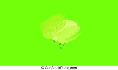Lettuce icon animation cartoon object on green screen background