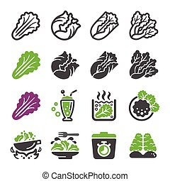 lettuce icon set,vector and illustration